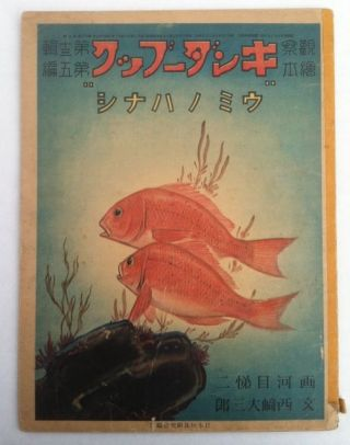 Japanese Children's Book] KinguuBukkuu: Umi no Hanashi (King Book: Story of the Sea